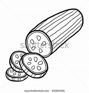 Cucumber Cartoon Vector Illustration Black White Stock ...