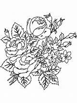 Coloring Flower Peony Flowers Printable Sketch Template sketch template