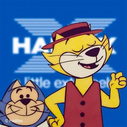 Animation Halifax Advert Cat Present Future Reference