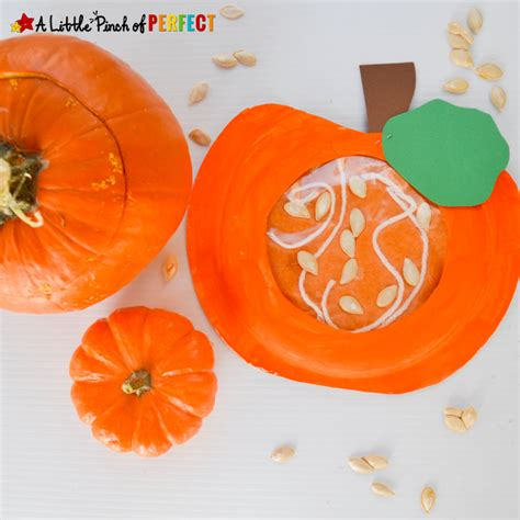 learning about what s inside a pumpkin paper plate 421 | Inside a Pumpkin Paper Plate Craft A Little Pinch of Perfect 7