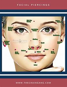 Facial Piercings Infographic