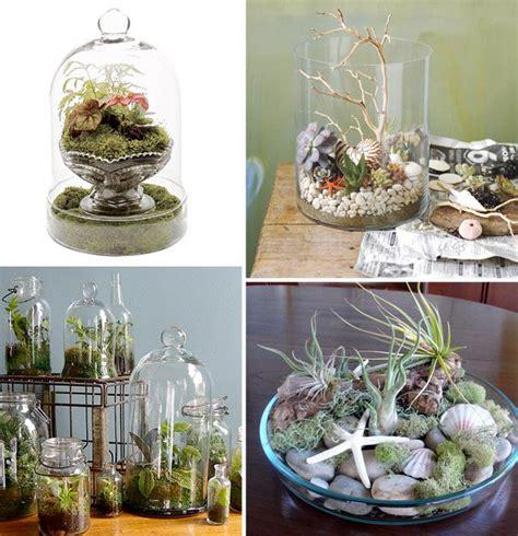 terrarium design terrarium design sensibility