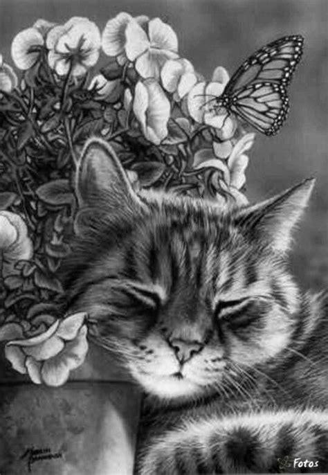 realistic drawings animal art cat  butterfly  flowers pencil drawings cat art