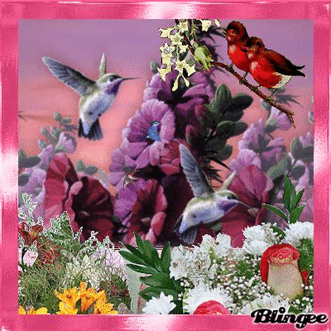 GIFS HERMOSOS: hermosas flores encontradas en la web