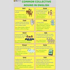 Best 25+ Collective Nouns Worksheet Ideas On Pinterest  Collective Nouns, Nouns Worksheet And