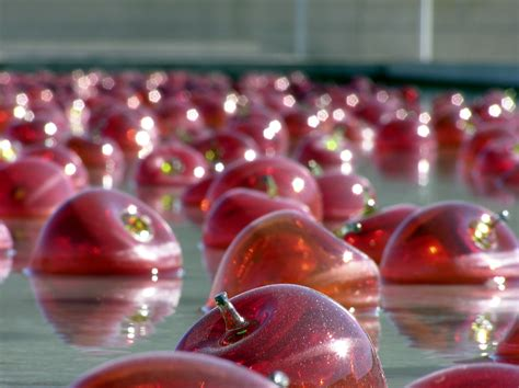 how much water is in an apple file sculptured red apples in water jpg