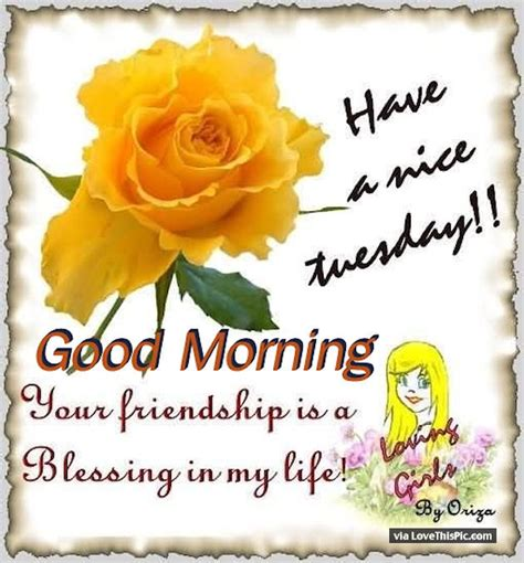 nice tuesday  friendship   blessing
