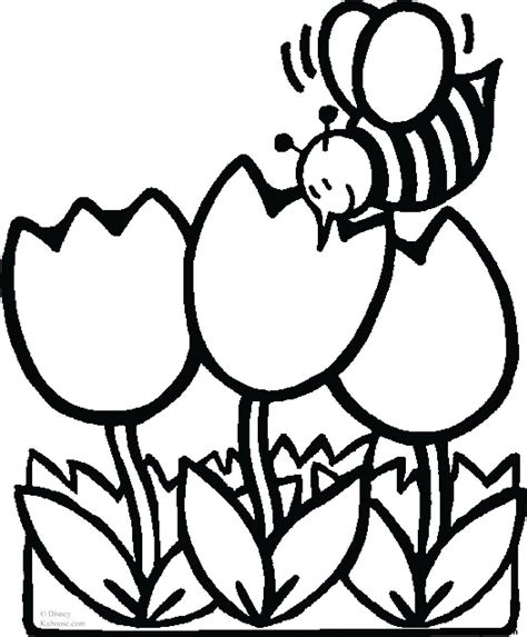 print  pictures coloring pages bee  tulips