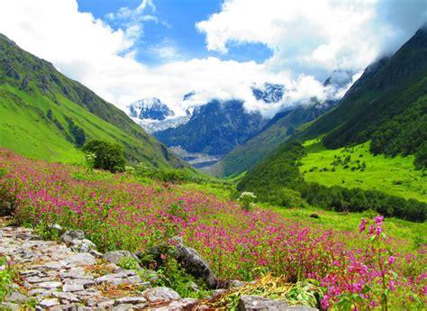 valley  flowers set  reopen  public  st june