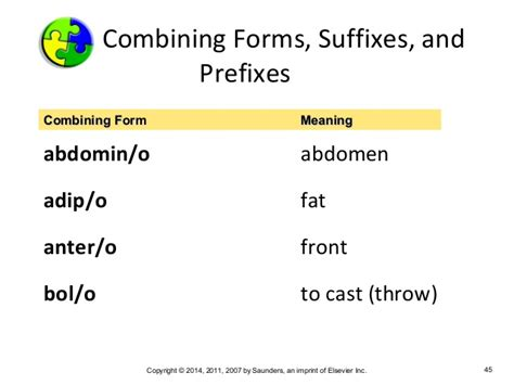combining form adip o medical terminology chapter 2