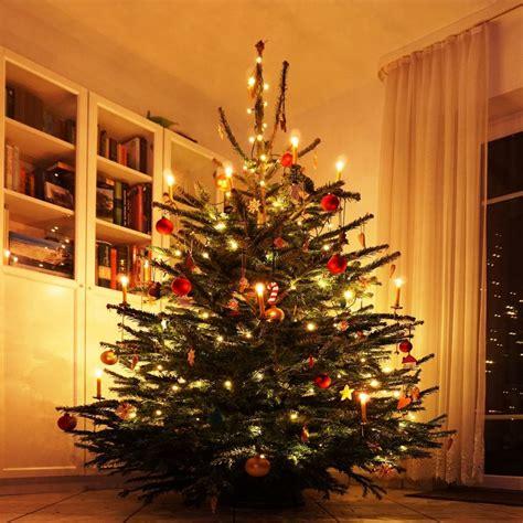 best 28 geschichte des weihnachtsbaumes mygully com