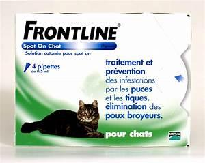 Bicarbonate Contre Les Puces De Chat : frontline spot on chat 4pip anti puce anti tique ~ Melissatoandfro.com Idées de Décoration