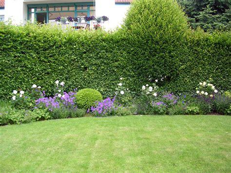 Garten Bepflanzung Sichtschutzwinkler Kreative Grten