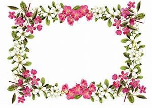 Free Printable Clip Art Borders free digital flower