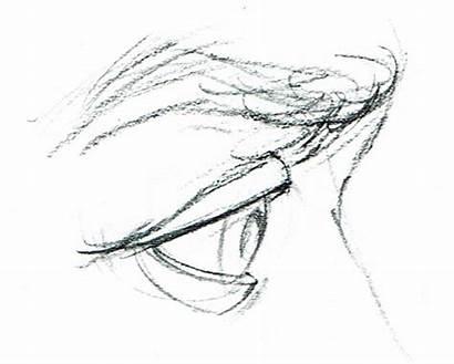Dibujar Lapiz Perfil Rostros Ojos Dibujos Paso