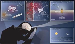 Immune response to a flu protein yields new insights into ...