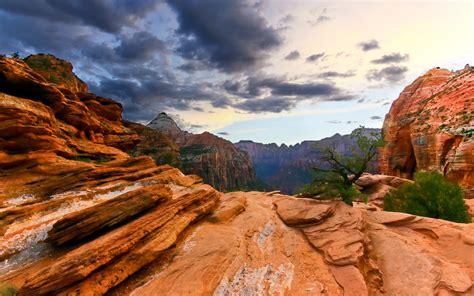 Zion National Park  Utah (united States Of America