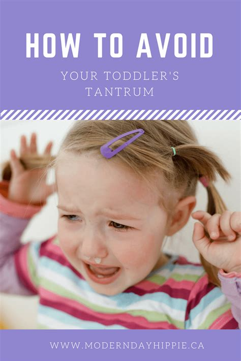 to avoid the s how to avoid your toddler s tantrum modern day hippie How