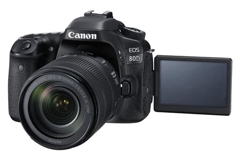 Semiprofessional Cameras A Detailed List Of The Best