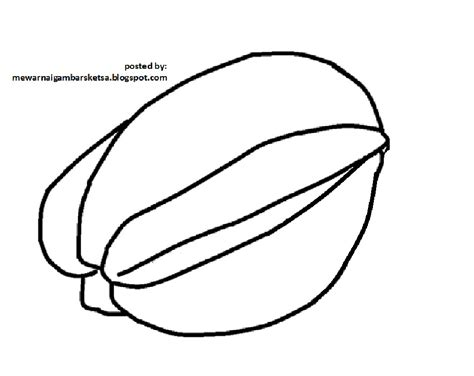 mewarnai gambar mewarnai gambar sketsa buah belimbing 1