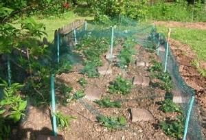Filet De Protection Jardin : blog d co et tendance ~ Dallasstarsshop.com Idées de Décoration