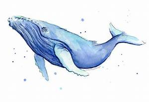 Humpback Whale Watercolor Print Whale Art Whale Painting