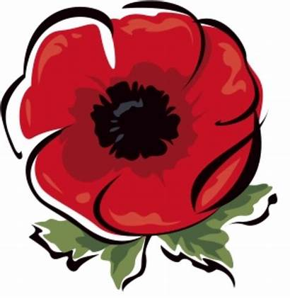 Remembrance Poppies Armistice Poppy November Act Forget
