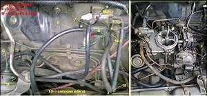 Jalur Vacuum Interplay