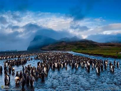 Geographic National Landscape Geo Nat Google