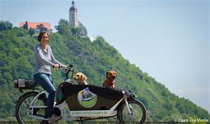 Fahrradkorb Hund Hinten : urlaub mit hund radreisen radtour radausflug ebike e bike ~ Kayakingforconservation.com Haus und Dekorationen
