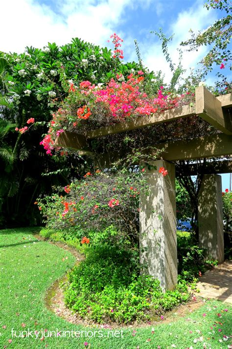 Maui Backyardfunky Junk Interiors