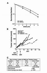 Nelfinavir Radiosensitization Of A549 Cells In Vivo And In
