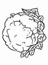 Cauliflower Coloring Pages Lettuce Vegetables Drawing Printable Getcolorings Plants Recommended Getdrawings Adults sketch template