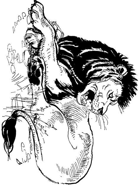 Lion Coloring Pages