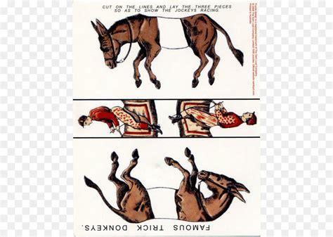 trick famous donkeys donkey puzzles horse cleanpng cartoon