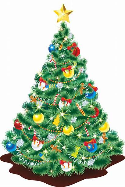 Christmas Tree Clipart Clip Realistic Reindeer Clipground