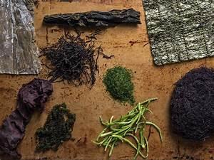 A Seaweed Primer  How To Use Kelp  Nori  Wakame  And More