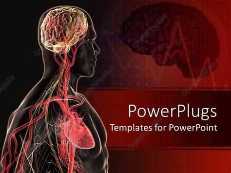 powerpoint template human body anatomy  brain blood