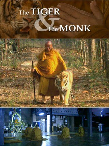 Amazon.com: The Tiger And The Monk: Howard Nightingall