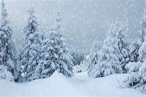 How SNOWY Will This Winter Be?