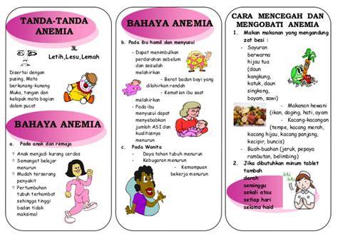 Wanita Hamil 11 Bayi Leaflet Anemia Akper Raha Muna
