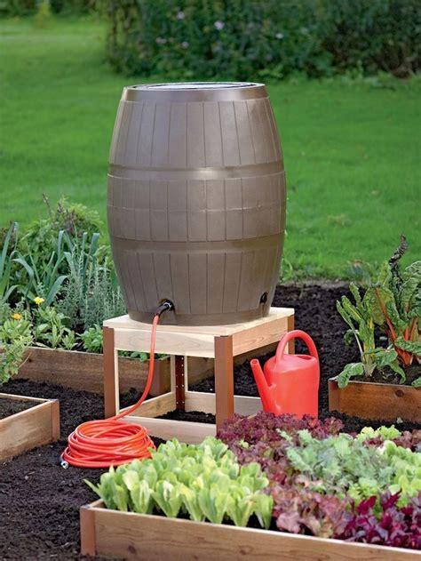 Garten Pflanzen August Gemüse by 1001 Ideen Und Inspirationen Wie Sie Ihren Garten