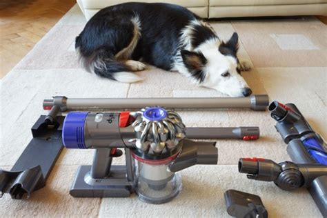 Dyson  Animal Review Trusted Reviews