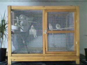 Fabrication D Une Voliere Exterieur : ma fabrication grande cage ~ Premium-room.com Idées de Décoration