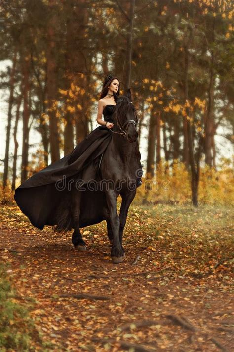 young girl  horse stock image image  countryside