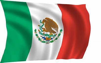 Flag Mexican Mexico Cool Bird Iphone Golden