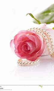 Pink Rose And Pearl Beads. Stock Photos - Image: 35628213