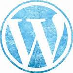 Ice Icon Icons Wordpress Site Custom