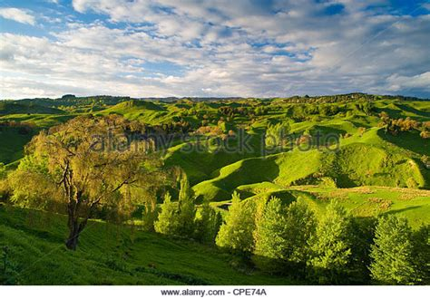 green bankers l nz new zealand landscape green stock photos new zealand