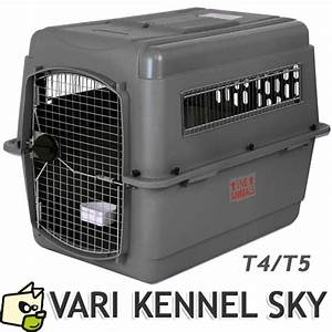 Cage Transport Chien Voiture : transport d 39 un chien voiture avion avec cage de transport ~ Medecine-chirurgie-esthetiques.com Avis de Voitures